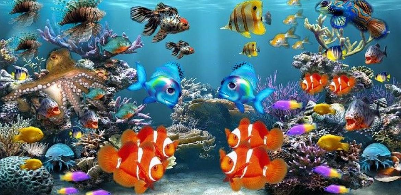 Comment déménager un aquarium ?